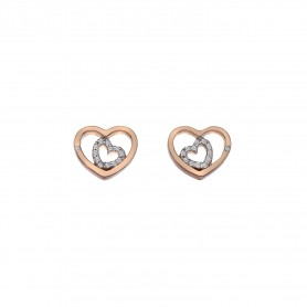 Brincos Hot Diamonds Adorable Encased - DE549